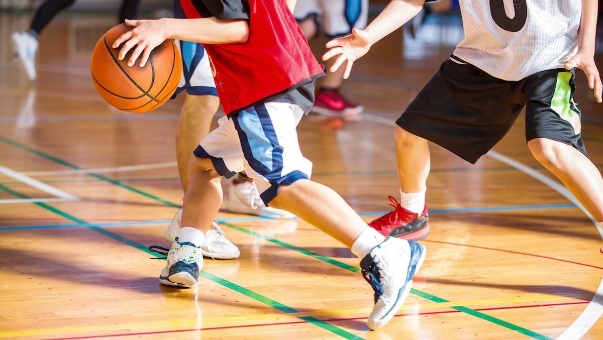 spécialité sport au bac